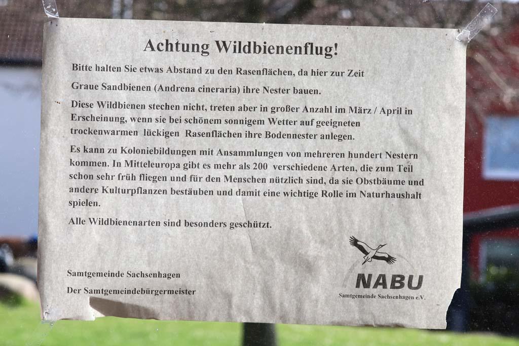 Information über Wildbienen