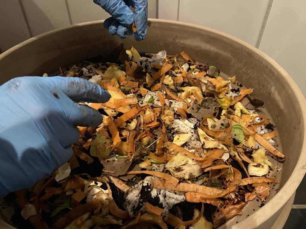 Futter für die Kompostwürmer